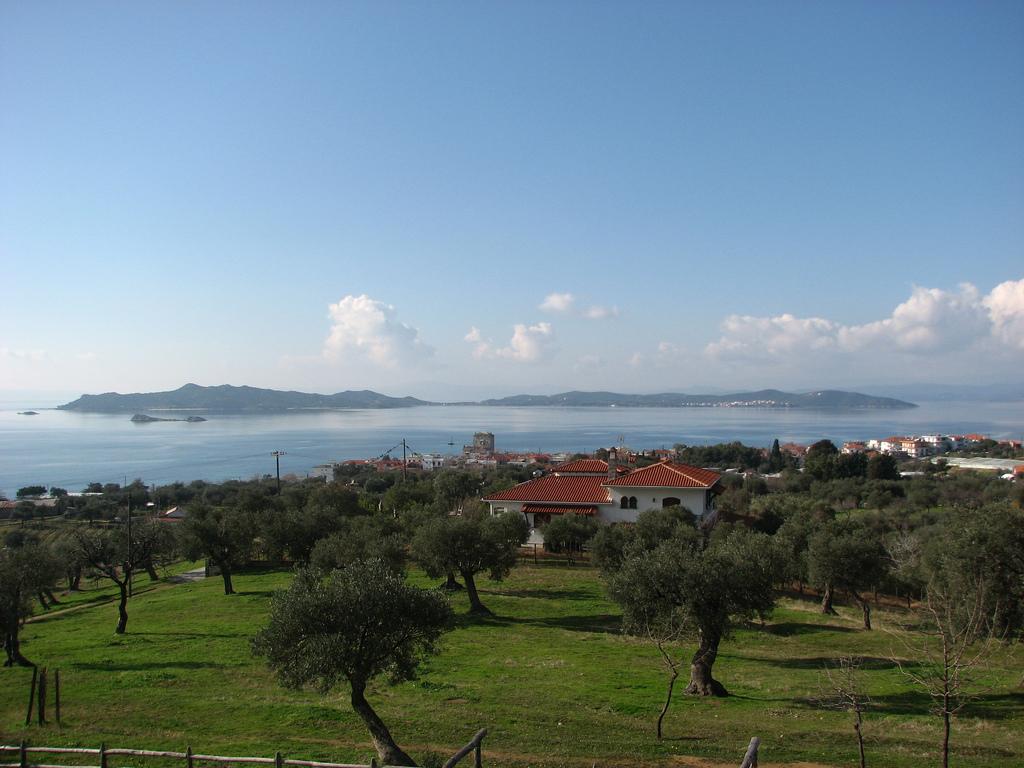 Виллы в греции где